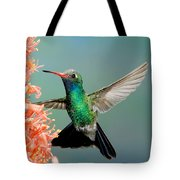 Broad-billed Hummingbird At Ocotillo Tote Bag