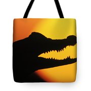 Broad-snouted Caiman  Tote Bag