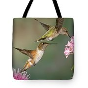 Broad Tails Tote Bag