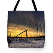Broken Sustainable Forest Management Tote Bag