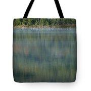 Broken Wood Tote Bag