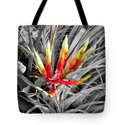 Bromeliad 1 Tote Bag