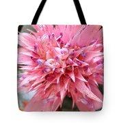 Bromeliad Close Up Pink Tote Bag