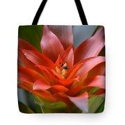 Bromeliad I Tote Bag