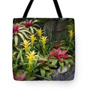 Bromeliads Tote Bag