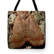 Bronze Moth Tote Bag