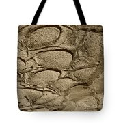 Bronze Mud Patterns 2 Tote Bag