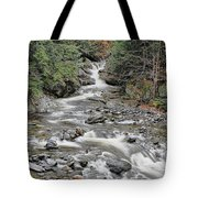 Brook In October Tote Bag
