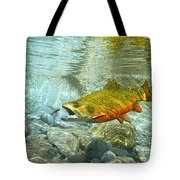 Brook Trout And Artificial Fly Tote Bag
