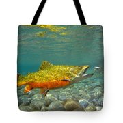 Brook Trout And Coachman Wet Fly Tote Bag