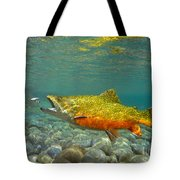 Brook Trout And Royal Coachman Tote Bag