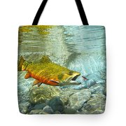Brook Trout And Silver Doctor Tote Bag