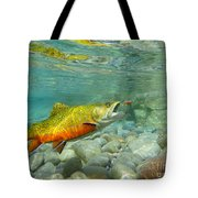 Brookie With Wet Fly Tote Bag