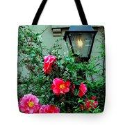 Brooklyn Beauty Tote Bag