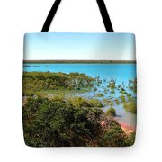 Broome Mangroves Tote Bag