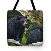 Brothers Bear Tote Bag
