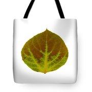 Brown And Green Aspen Leaf 4 Tote Bag