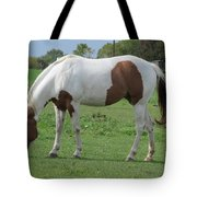 Brown And White Painted Horse Tote Bag