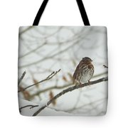 Brown And White Speckled Bird On Snowy Limb Tote Bag