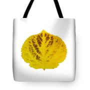 Brown And Yellow Aspen Leaf 3 Tote Bag