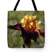 Brown And Yellow Iris Tote Bag