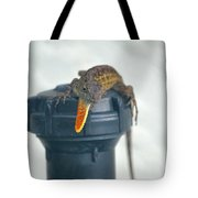 Brown Anole With Dewlap Tote Bag