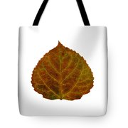Brown Aspen Leaf 2 Tote Bag