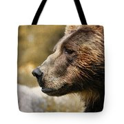 Brown Bear Golden Morning Tote Bag