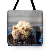 Brown Bear Tote Bag