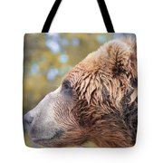 Brown Bear Portrait In Autumn Tote Bag