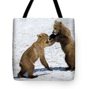 Brown Bear Ursus Arctos Cubs Play Tote Bag