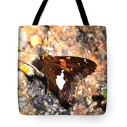 Brown Beauty Tote Bag