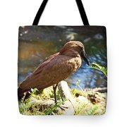 Brown Bird Tote Bag