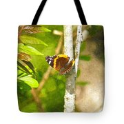 Brown Butterfly 2 Tote Bag