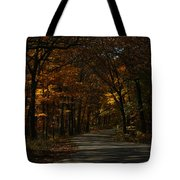 Brown County State Park Tote Bag