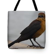 Brown Cowbird Tote Bag