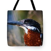 Brown Crested Kingfisher Tote Bag