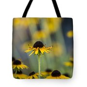 Brown Eyed Susans On Yellow And Green Tote Bag