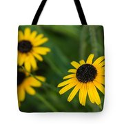 Brown Eyed Susans Tote Bag