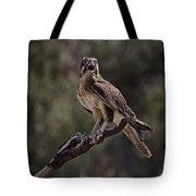 Brown Falcon V2 Tote Bag