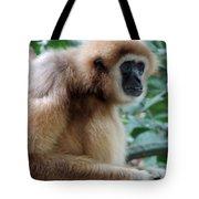 Brown Fur Tote Bag