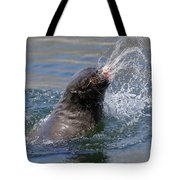 Brown Fur Seal Throwing A Fish Head Tote Bag