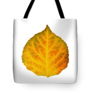 Brown Green Orange Red And Yellow Aspen Leaf 3 Tote Bag