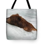 Brown Grizzly Bear Swimming  Tote Bag