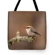 Brown-headed Nuthatch - Sitta Pusilla Tote Bag