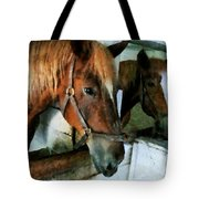 Brown Horse In Stall Tote Bag