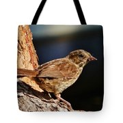 Brown Is Beautiful Tote Bag