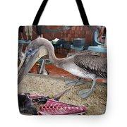 Brown Pelican At The Fish Market Tote Bag