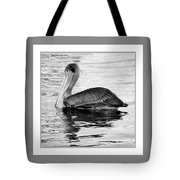 Brown Pelican - Black And White Tote Bag