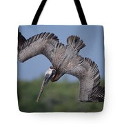 Brown Pelican Diving Academy Bay Tote Bag
